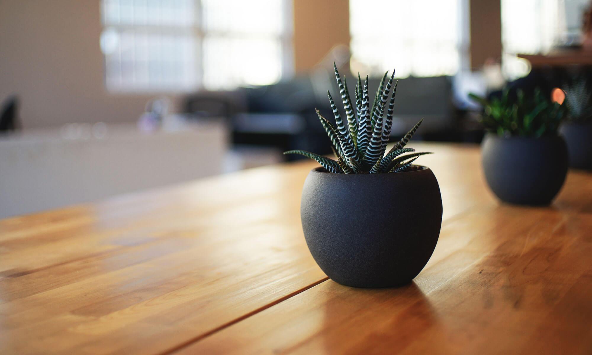 SEEDPLACE(シードプレイス)- 多摩地域の次世代の共創型シェアオフィス